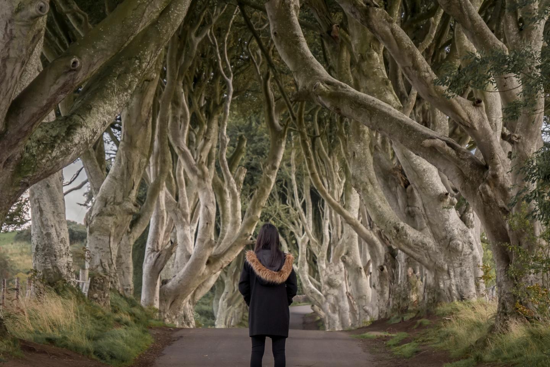 Northern Ireland's Most Impressive Got Locations Shutterstock 1206422095